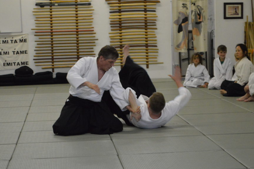 Aikido in Daily Life: February 2019